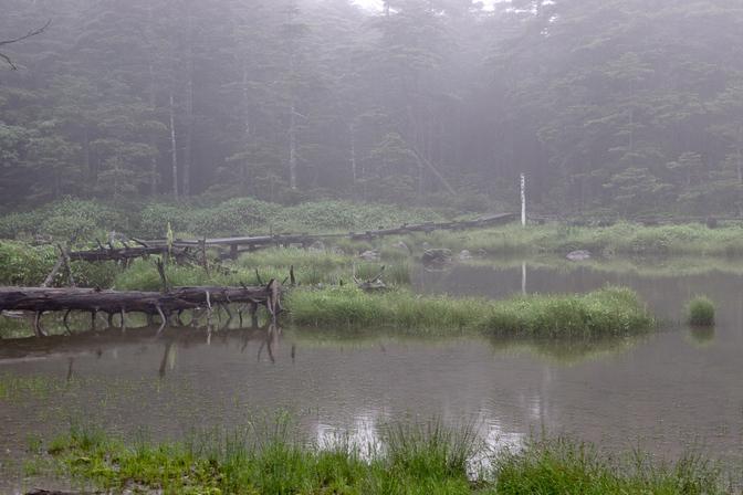 20090801-006.jpg